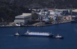Tiertransporte auf Schiffen: Totalversagen der Europäischen Union sowie der zuständigen Behörden