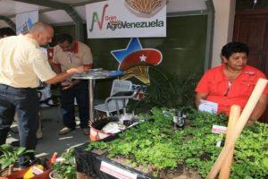 Venezuela, i Comitati Locali di Autofornitura e Produzione compiono 5 anni