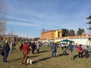 """Torino: iniziativa """"Un prato per tutti, tutti per un prato"""" per salvare il grande prato di Parella"""