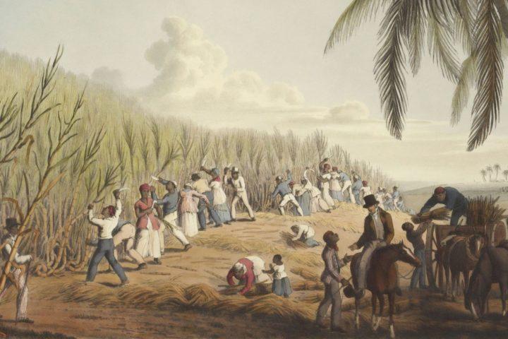 PHI en el Día Internacional de Recuerdo de las Víctimas de la Esclavitud y la Trata Trasatlántica de Esclavos: «El mayor genocidio de la humanidad»