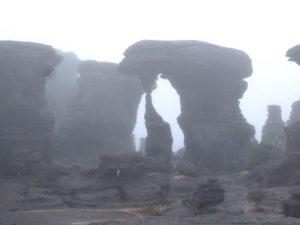Neblina