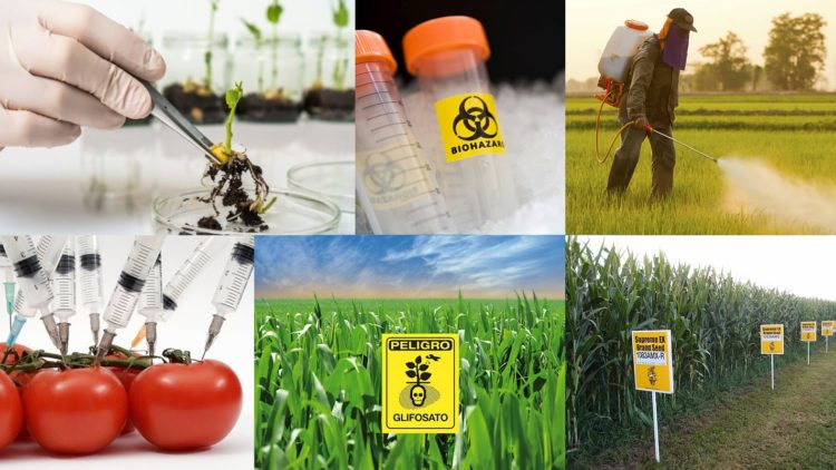 Biotecnología baja la lupa del procomún y sostenibilidad