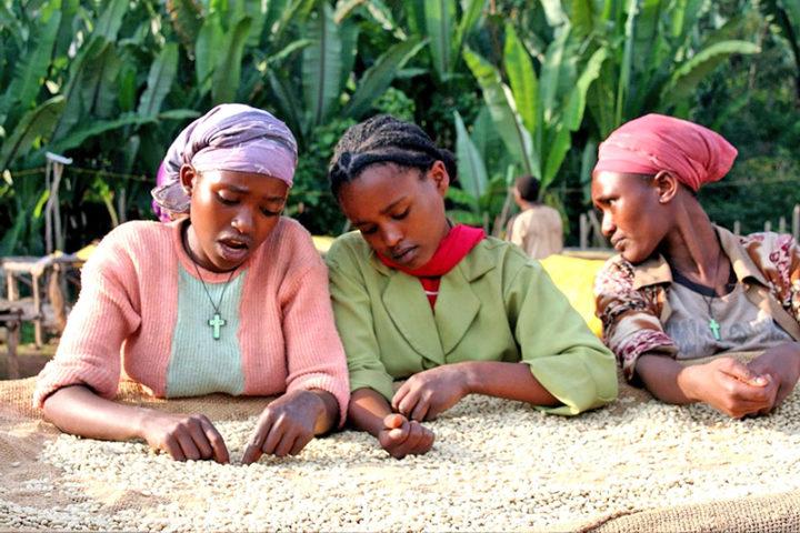 ONU denuncia violencia de género y contra la salud en Etiopía