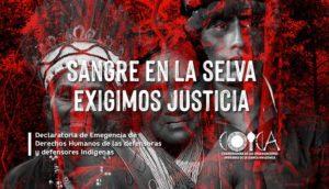 Amazzonia, organizzazioni indigene denunciano l'etnocidio