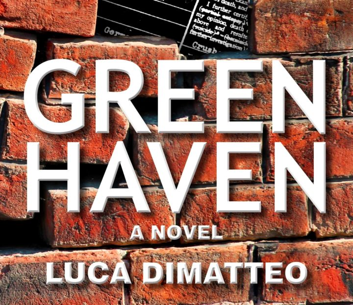 Interview with Luca DiMatteo: Author of Green Haven