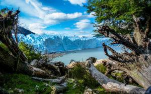 Día de la Tierra: política y leyes ambientales