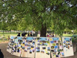 Parco Agricolo del Ticinello, verranno consegnate al Sindaco di Milano le quasi 30mila firme della petizione