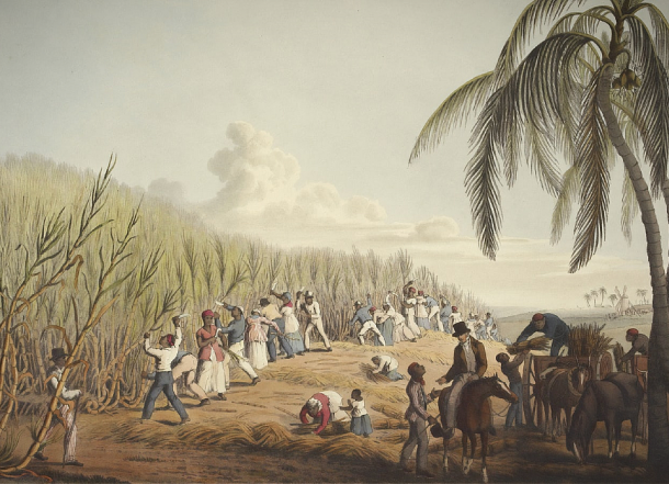 Αποικιοκρατία: Οι απαρχές της περιβαλλοντικής κρίσης