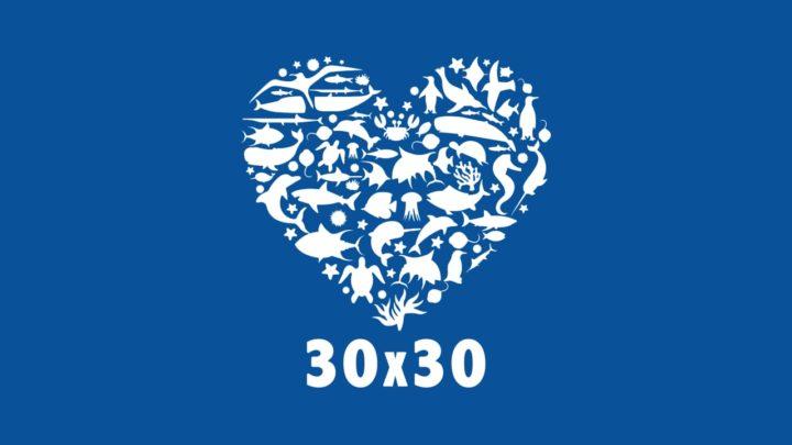 Se non proteggiamo il 30% del nostro pianeta entro il 2030, la Terra potrebbe risultare inadatta per la vita