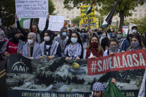 Palestine solidarity sweeps the US as Israel continues assault on Gaza