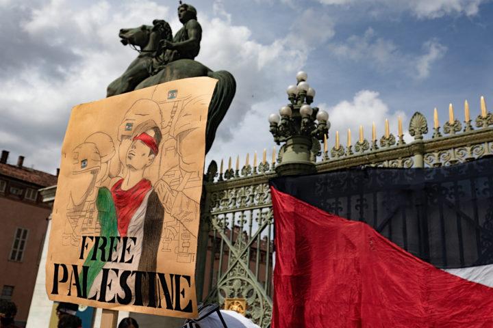 Manifestazione Palestina 10