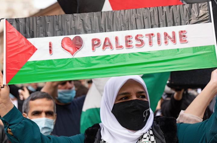 Manifestazione Palestina 24