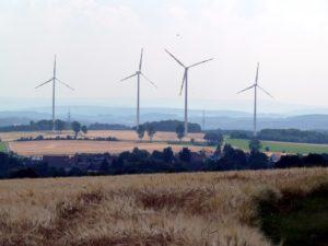 Windenergie oder Artenschutz: Eine falsche Alternative