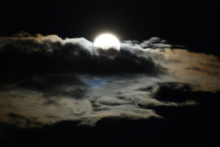 Homage: A Poem and Ten Haikus in Loving Memory