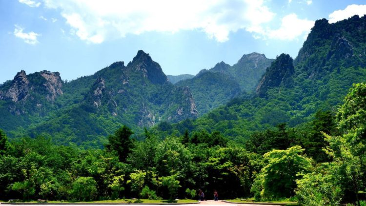 A cultural trip to Seoraksan National Park in observing World Environment Day