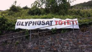 Union jetzt doch wieder für Glyphosat – ÖDP fordert endlich Insektenschutz vor Lobbyismus!
