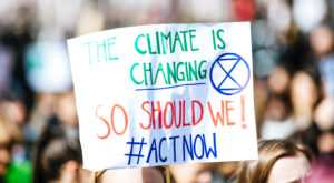 Climate Crisis Can Lead to Improved Social Cooperation and Economy