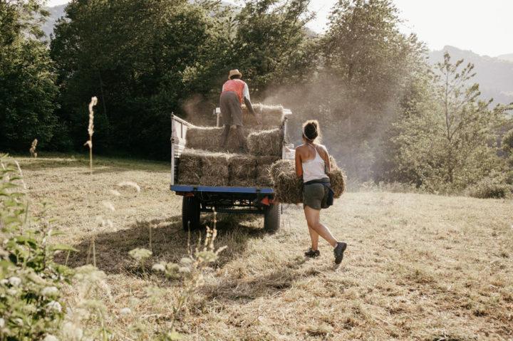 Humus Job, la rete di aziende etiche per un'agricoltura consapevole – Io faccio così #328