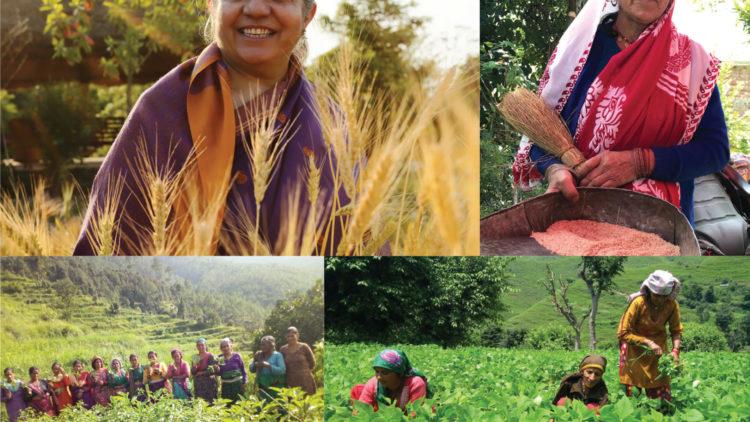 Vandana Shiva: Wer ernährt die Welt wirklich? - Eine Buchrezension