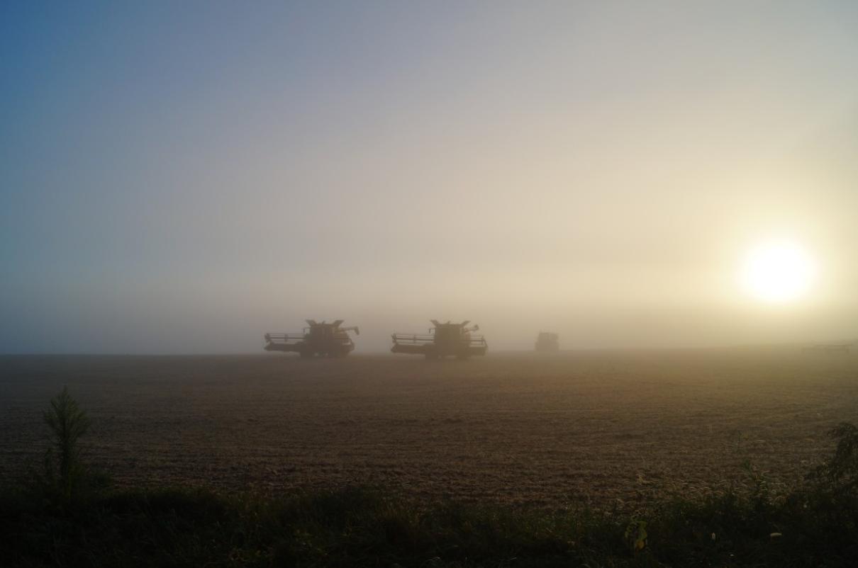 Die Welternährung ist massiv gefährdet, durch Agrarkonzerne und die Erdüberhitzung
