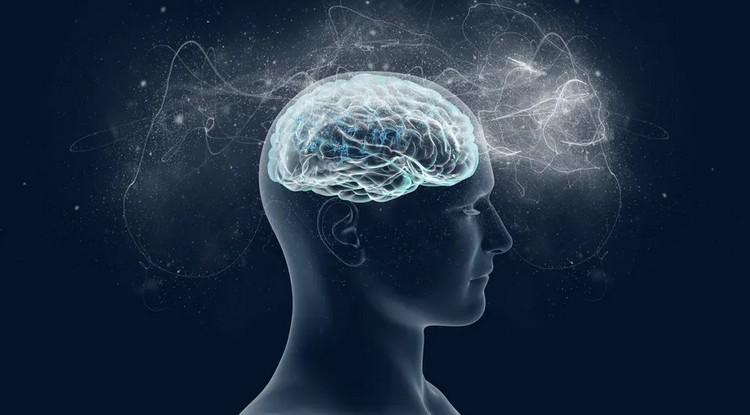 La conscience peut-elle être expliquée par la physique quantique ? Mes recherches nous rapprochent de la réponse