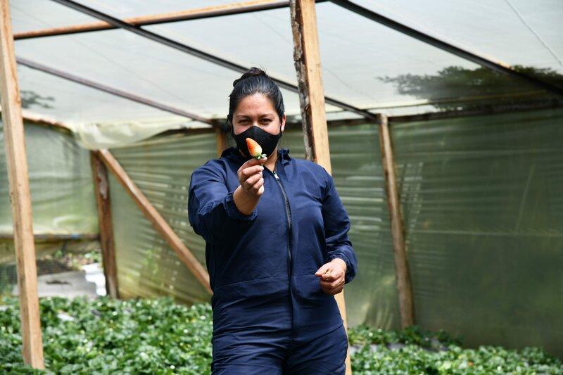 Colombia: en Nariño, pacificadores