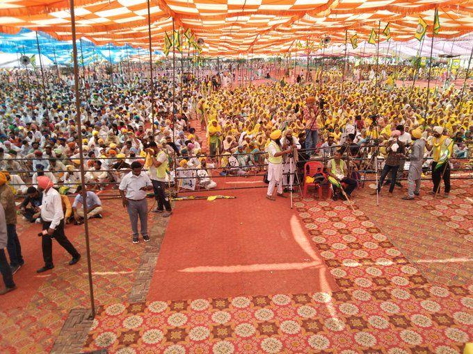 India manifestazione