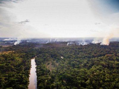 As queimadas iniciadas no início do mês de setembro, atingiram fortemente a aldeia Ka'a kyr, na Terra Indígena Alto Rio Guamá. (Foto: Cícero Pedrosa Neto/Amazônia Real-26/09/2020)