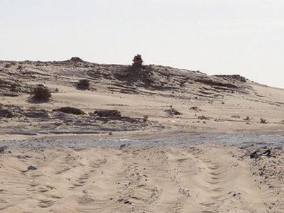 Posten_der_Frente_Polisario_2_o_1.v1