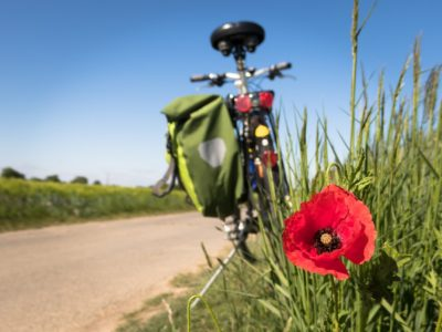to-go-biking-5178398_1280